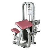 Body Solid Pro Club Line Seated Bicep Curl.Code (SBC-600/2G)